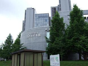 東北大学自然史標本館