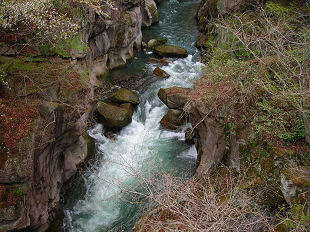 覗き橋から覗いた名取川